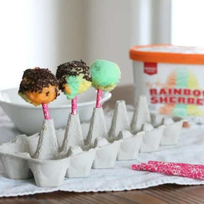 Refreshing Rainbow Sherbet Ice Cream Pops
