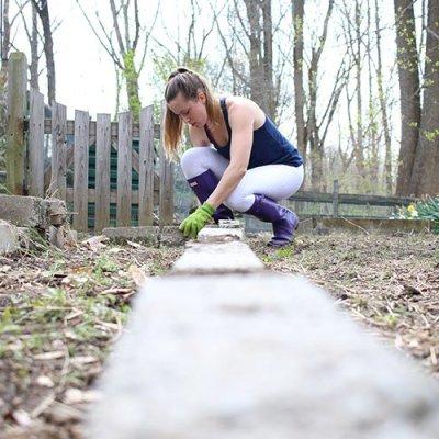 Our Honest Garden Grows: Best of Beginner Intentions