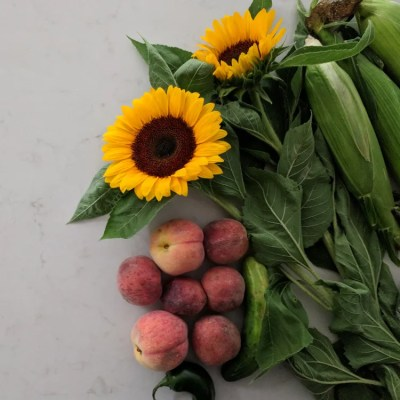 7 Lessons Learned After Trying a CSA