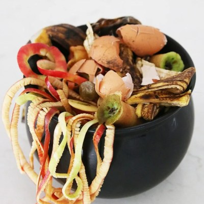 What Can I Compost From Halloween?