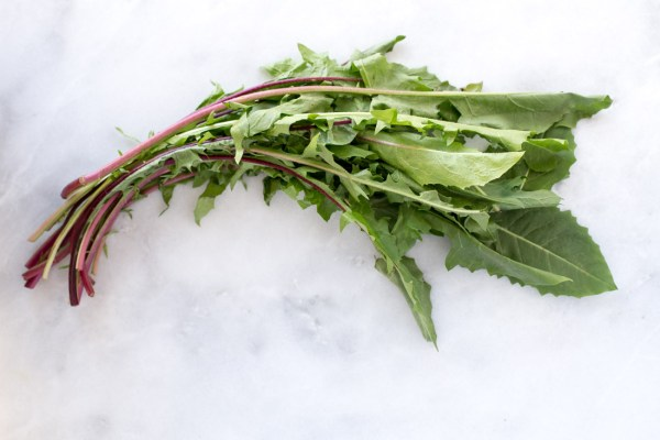 Curated Kitchen: Health Benefits of Dandelion Greens