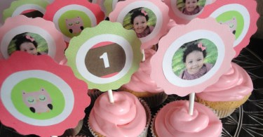Girls first birthday party -homemade cupcakes for owl themed party