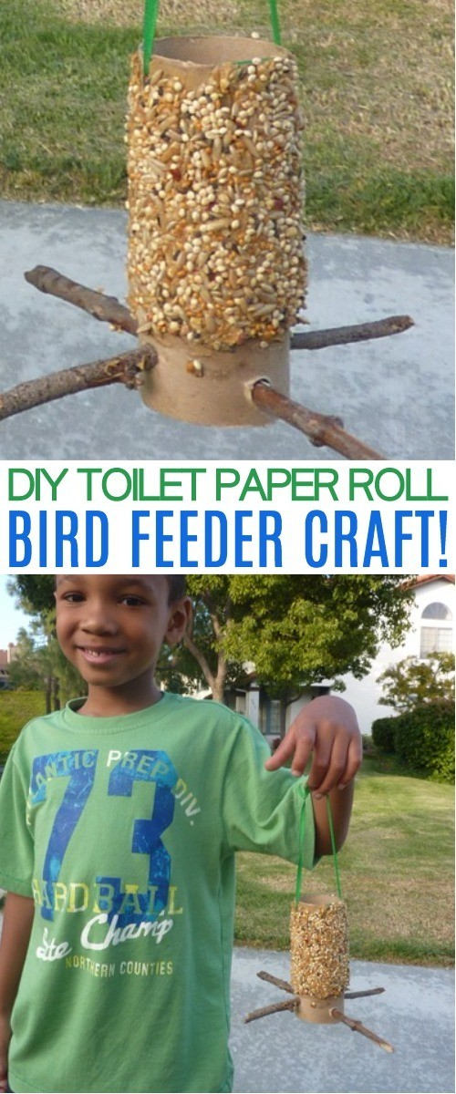 How To Make A Toilet Paper Roll Bird Feeder Craft - This toilet paper roll bird feeder craft is a super fun spring activity for kids! Reuse toilet paper rolls and watch the birds feast on your creation - a bird feeder toilet paper roll!