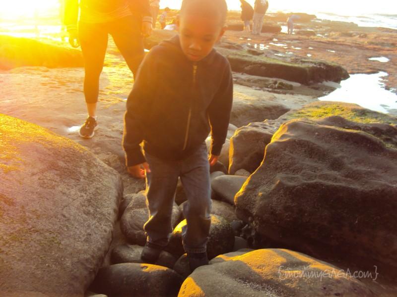 Boy on the rocks, La Jolla Tide Pools