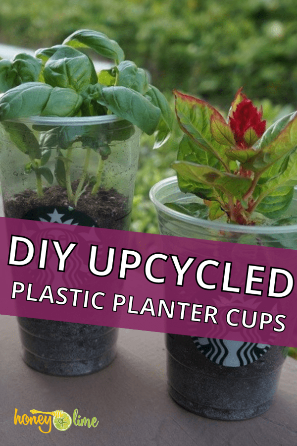 DIY Upcycled Frappuccino Plastic Cup Planters - a fun Starbucks cup craft