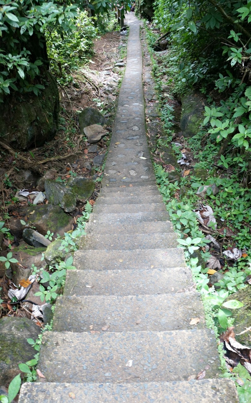 Stairway to nowhere. This is in Puerto Rico, El Yunque Rainforest, La Mina Falls Trail