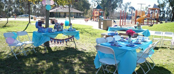 Frozen Birthday Party decorations with tables set up at a park
