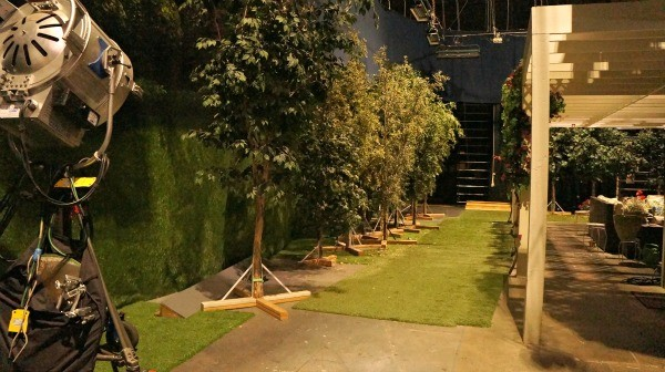 ABC's Blackish Set - Model trees and grass on the side of the house