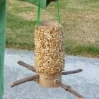 easy homemade bird feeder craft for kids