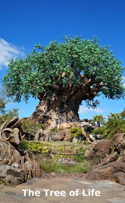 Disney's Animal Kingdom theme park, the Tree of Life