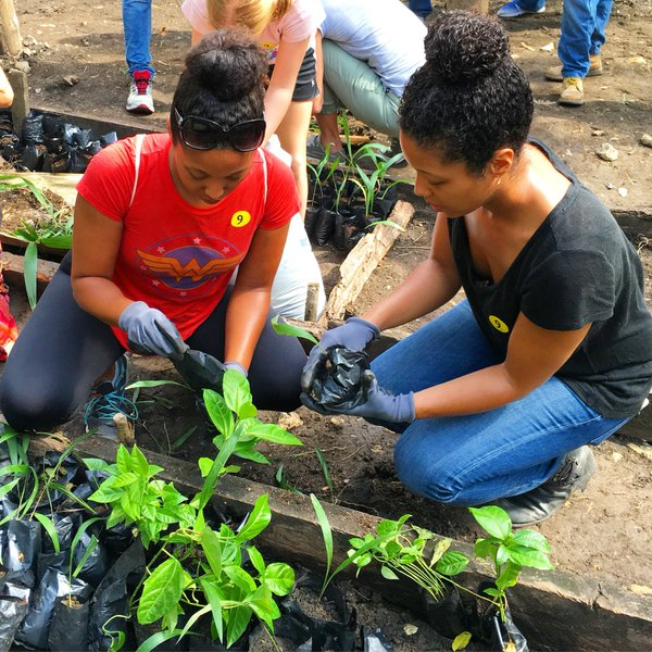 Fathom travel, working the reforestation project at Loma Isabel de Torres, Puerto Plata, Dominican Republic