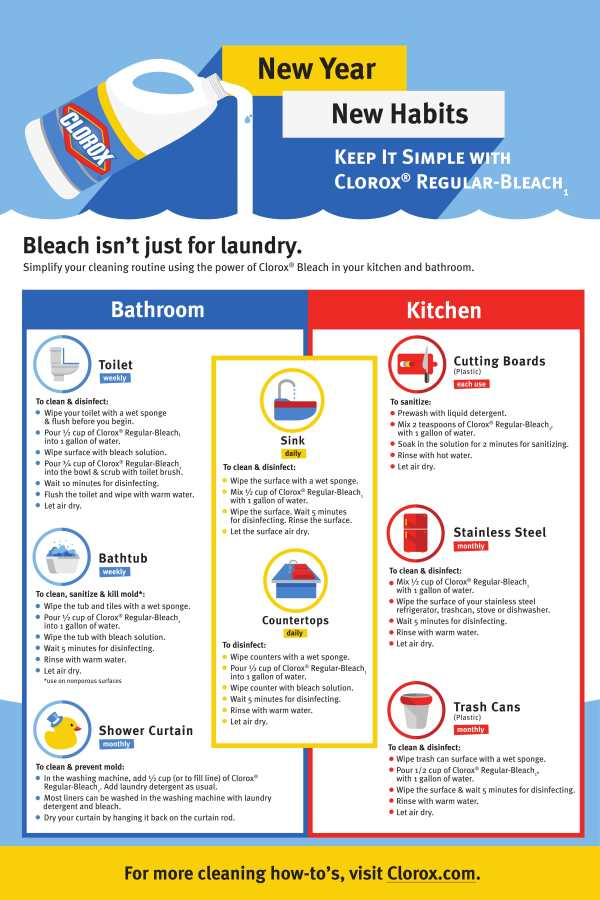 Cleaning your house for the new year - Clorox Regular Bleach fact sheet