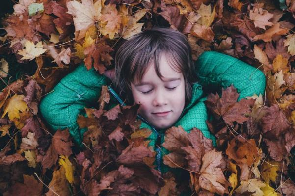 Kid child boy playing in fallen maple leaves