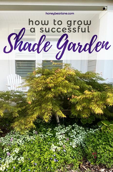 How to grow a successful shade garden