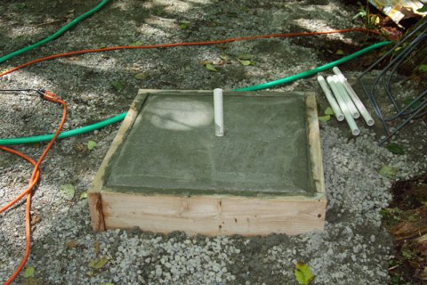 Water sources for bees: a pour of fresh concrete in a wooden frame is attractive to thirsty bees.
