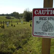 Beeware delle api.  Herb Lester apiari, Tennessee.