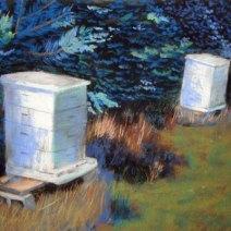 Pastello di Iowa alveare da Jim Davis.  Bees101 è il blog di Jim e Kathy Davis.