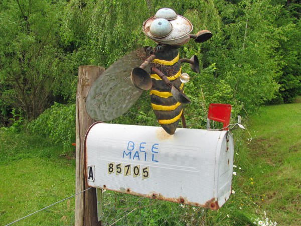 Bee-mail-Ostrofsky-800-px