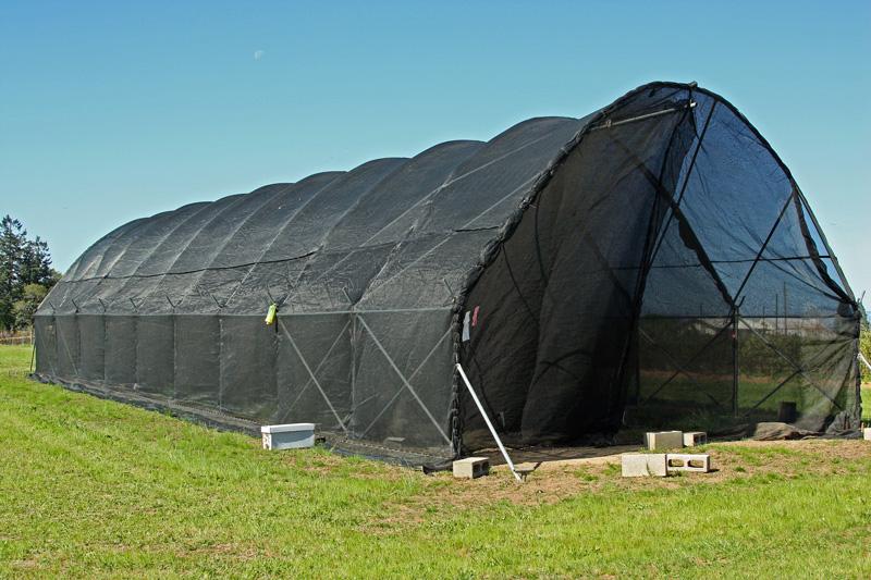 Flight-cages-OSU-Experimental-Farm