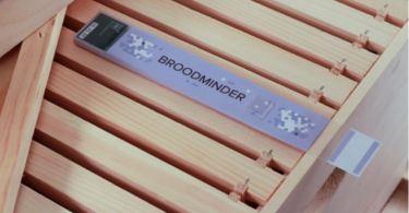 BroodMinder