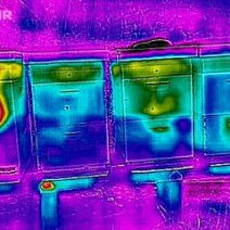 I received a FLIR One for Christmas and couldn't wait to check out the bees in my backyard located in Renton, WA. © Tracy Klein.