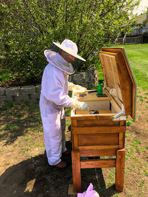 New beekeeper: First-year beekeeper Carol Reinhard prepares to install a package of bees into a Valkyrie long hive.