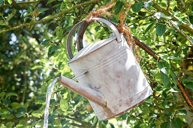 When the zinc coating begins to corrode, it sheds as a grayish-white powder which may be toxic to bees.