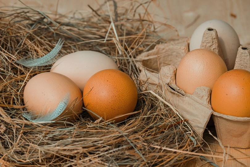 I don't want to know how much my golden eggs cost. I just want to revel in the experience. Pixabay photo.