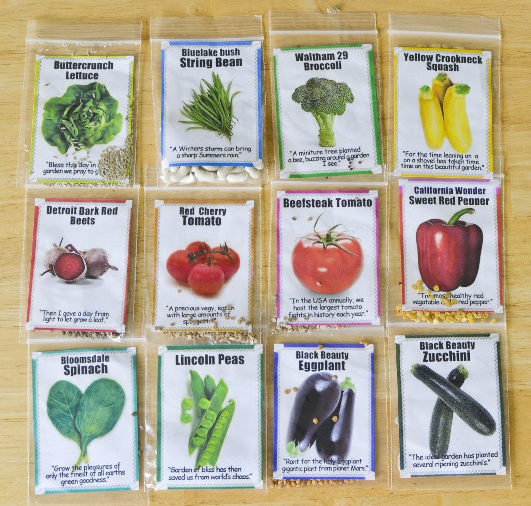 Functional Toolbox Garden Seed Packets