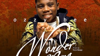 Photo of DOWNLOAD: Ozzy Bee – Wonder Mama