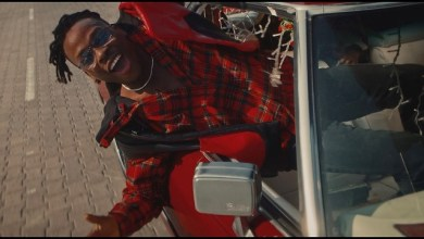 Photo of VIDEO: Fireboy DML – Friday Feeling