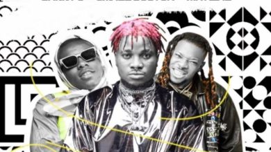 Photo of MP3: Danny S Ft Small Doctor x Mr Real – Off The Light (Remix)