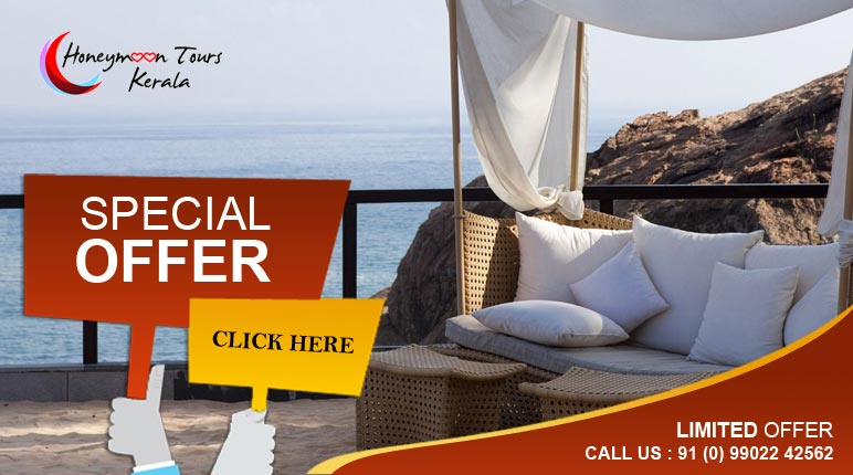 honeymoon tour packages in kerala special offer