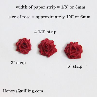 paper quilled roses in different sizes