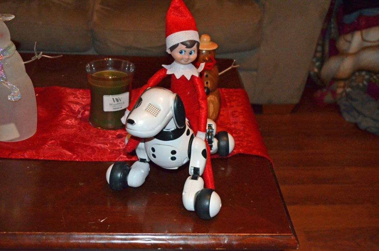 Unique Elf Ideas, creative, Elf on the Shelf, Elf riding Zoomer