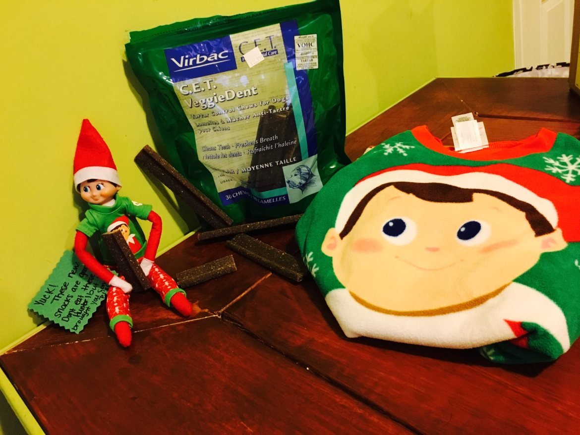 elf on the shelf ideas, Creative & unique elf ideas, dog food