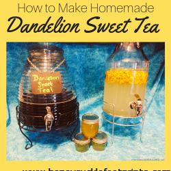 Dandelion, Infused, Tea, Healthy, Homegrown, Homemade