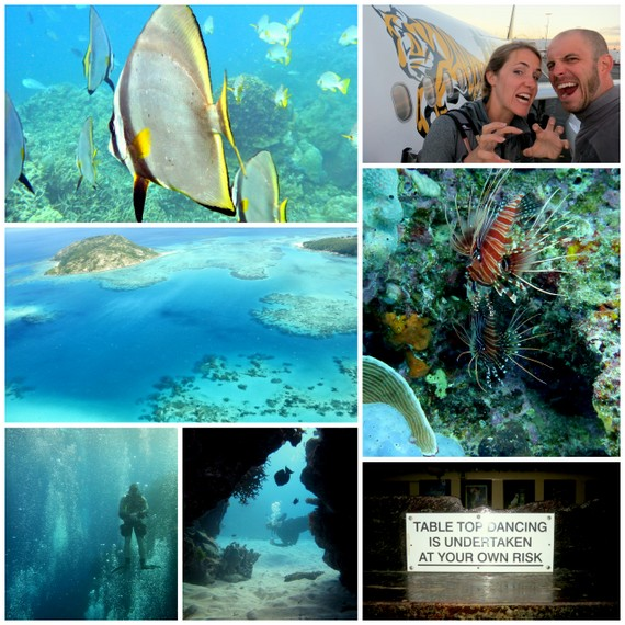 Great Barrier Reef-photo gallery