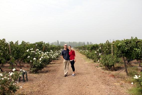 Aquitania Vineyards Santiago Chile