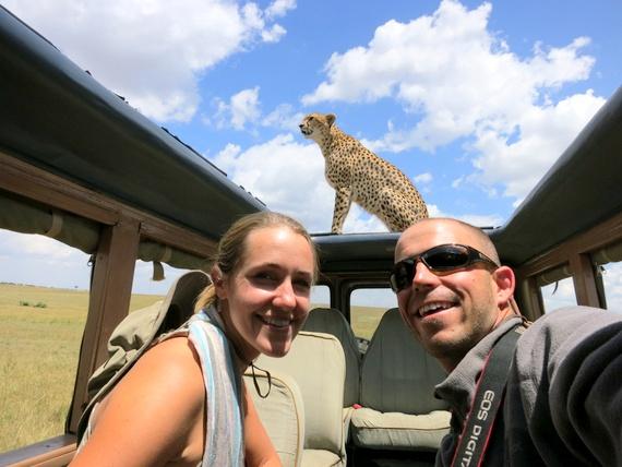 Cheetah on the roof of our safari vehicle in the Masai Mara