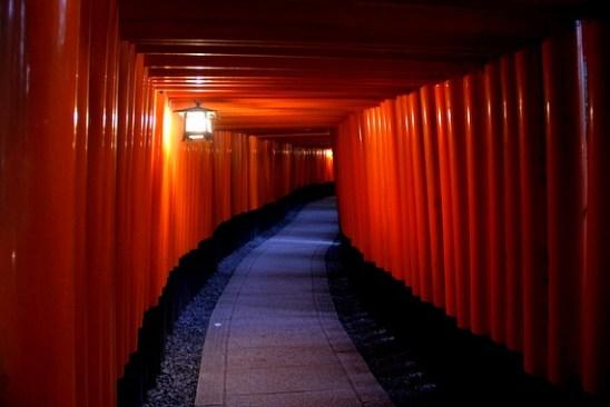 Fushimi torri gates