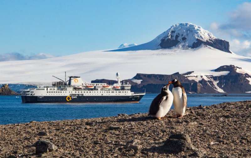 Antarctica honeymoon
