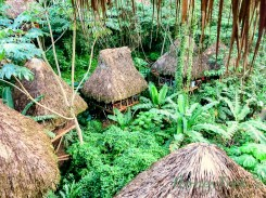 Glamping Dominican Republic