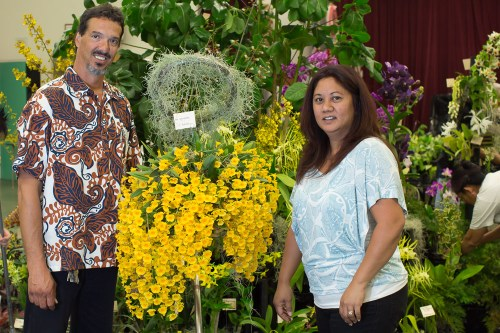 Roy and Sheila Andrade proudly display their well grown Den. aggregatum.