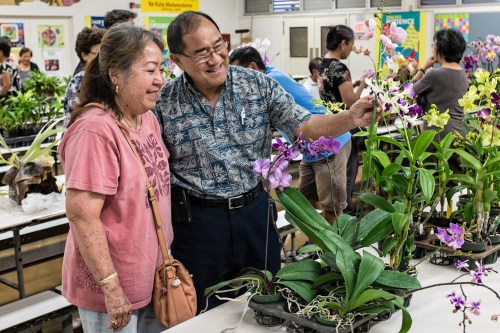 Ken and Aileen Ching inspect the plants before placing their bids.