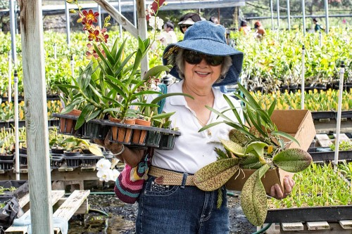 The field trip provides members with a good opportunity to pick up an assortment of plants at very reasonable prices.
