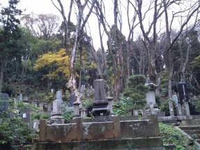 p_shikinoyama1111_10b