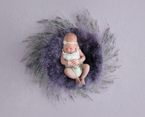 Baby liegt auf einem Lavendel Nest, Digital Background