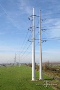 Wintracks nabij Bleiswijk