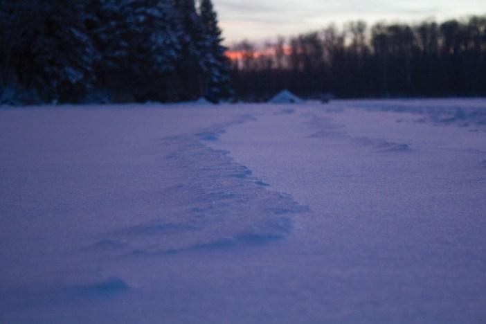 8 - Snowdunes